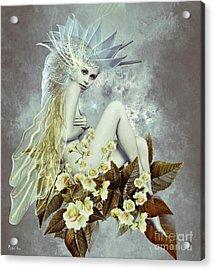 Rose Fairy Acrylic Print by Ali Oppy