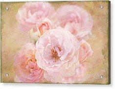 Rose Garden 1 Acrylic Print