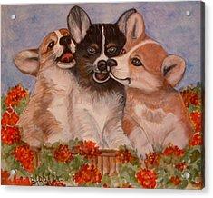 Rose Hyacinth And Daisy Acrylic Print by Barbara Oberholtzer