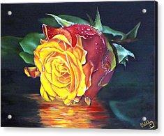 Rose Laura Acrylic Print