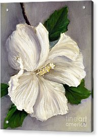 Rose Of Sharon Diana Acrylic Print by Randy Burns