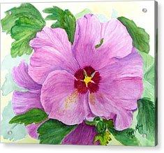 Rose Of Sharon Acrylic Print