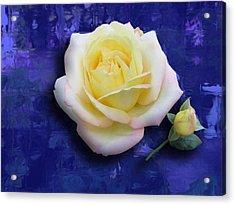 Rose On Blue Acrylic Print by Morgan Rex