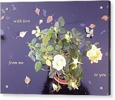 Rose On Glass Table With Loving Wishes Acrylic Print