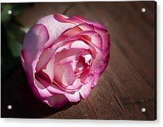 Rose On Wood Acrylic Print