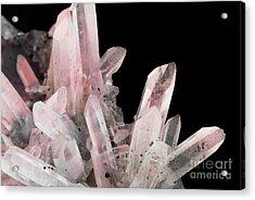 Rose Quartz Crystals Acrylic Print