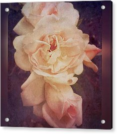 Rose #stackablesapp #roses #enlight Acrylic Print