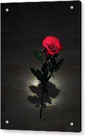 Rose Acrylic Print by Svetlana Sewell