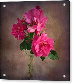 Acrylic Print featuring the photograph Rose Trio Still Life by Louise Kumpf
