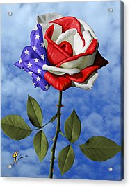 Rose White And Blue Acrylic Print