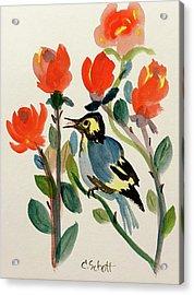 Rose With Blue Bird Acrylic Print