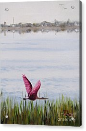 Acrylic Print featuring the painting Roseate Spoonbill Flight Over The Bay by Jimmie Bartlett