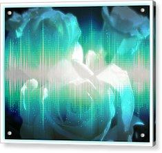 Roses #10 Acrylic Print