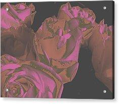 Roses #2 Acrylic Print