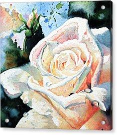 Roses 6 Acrylic Print by Hanne Lore Koehler