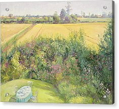 Roses And Cornfield Acrylic Print by Timothy Easton