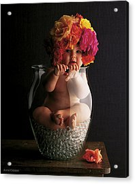 Roses Acrylic Print by Anne Geddes