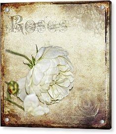 Roses Acrylic Print by Carolyn Marshall