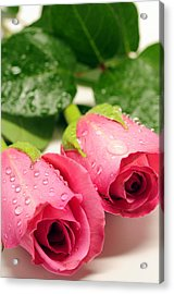 Roses For My Love Acrylic Print