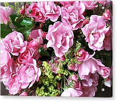 Roses From The Garden Acrylic Print