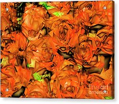 Acrylic Print featuring the photograph Roses In Abstract 20170325 by Wingsdomain Art and Photography