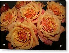 Roses Acrylic Print by Linda Hardin