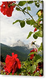 Acrylic Print featuring the photograph Roses Of The Zugspitze by KG Thienemann