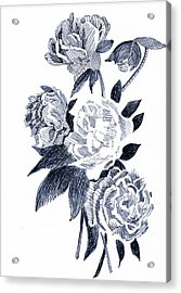 Roses Acrylic Print by Robbi  Musser