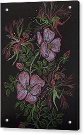 Roses Run Amok Acrylic Print by Dawn Fairies