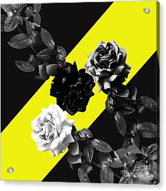 Roses Versus Yellow Acrylic Print