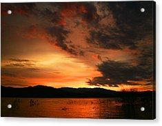 Rosevelt Sunrise Acrylic Print