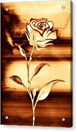 Rosewood Acrylic Print by Dolly Mohr