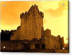 Ross Castle Acrylic Print by Aidan Moran