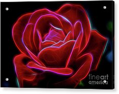 Rosy Dream Acrylic Print