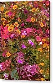 Rosy Garden Acrylic Print
