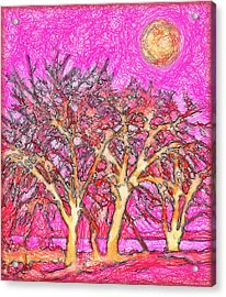 Acrylic Print featuring the digital art Rosy Hued Trees - Boulder County Colorado by Joel Bruce Wallach
