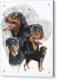 Rottweiler W/ghost  Acrylic Print by Barbara Keith