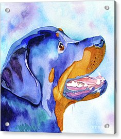 Acrylic Print featuring the painting Rotty Rottweiler Blues by Jo Lynch