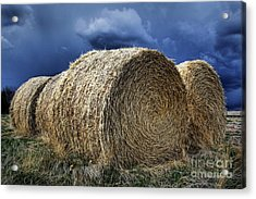 Acrylic Print featuring the photograph Round Bales by Brad Allen Fine Art