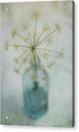 Round Dance Acrylic Print by Priska Wettstein