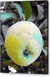 Round Fruit Acrylic Print