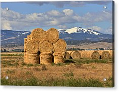 Round Hay Bales And Mountain Acrylic Print