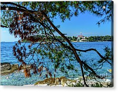 Rovinj Old Town Accross The Adriatic Through The Trees Acrylic Print