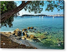 Rovinj Old Town, Harbor And Sailboats Accross The Adriatic Through The Trees Acrylic Print