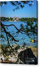 Rovinj Seaside Through The Adriatic Trees, Istria, Croatia Acrylic Print