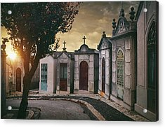Acrylic Print featuring the photograph Row Of Crypts by Carlos Caetano