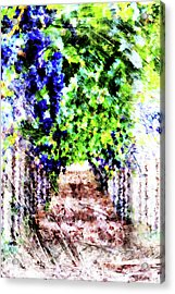 Row Of Grapes Acrylic Print by Andrea Barbieri