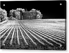 Rows In A Farm Field With Barn And Silo In Infrared Black And White Acrylic Print by Randall Nyhof