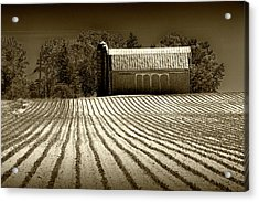 Rows In A Farm Field With Furrows In A Row In Sepia Tone Acrylic Print by Randall Nyhof