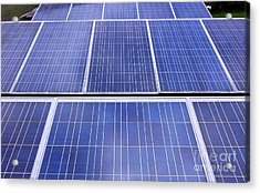 Acrylic Print featuring the photograph Rows Of Solar Panels by Yali Shi